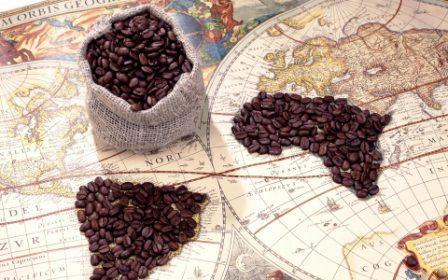 Káva historie