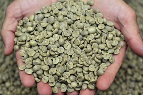 Zelená káva a její účinky