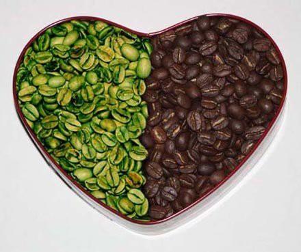 Zelená káva pod úvod